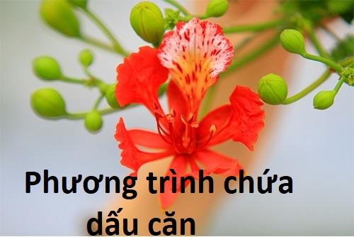 phuong trinh chua dau can lop 9