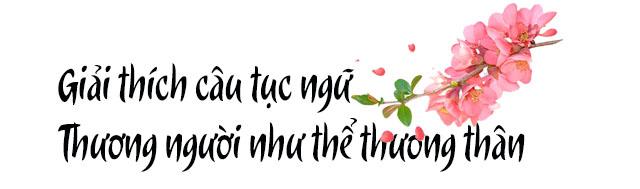 giai thich cau tuc ngu thuong nguoi nhu the thuong than
