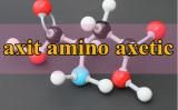 Axit Aminoaxetic là gì ? Axit Aminoaxetic phản ứng với chất nào ? Công thức là gì ?