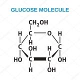 Công thức hóa học của đường Saccharose, Glucose, Fructose……