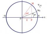 [ Dao động điều hòa là gì ? ] Lý thuyết và bài tập Vật lý lớp 12